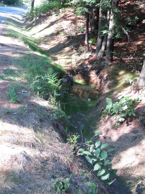 mulched ditch