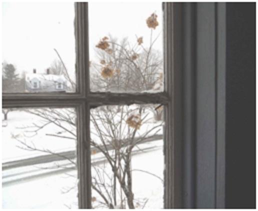 window sash in need of repair